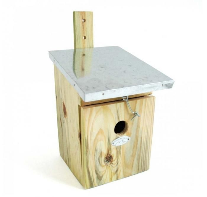 Casa pájaros.