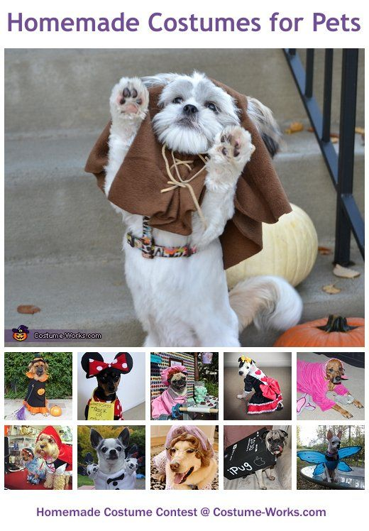 Homemade costumes for pets pinterest homemade costumes diy homemade costumes for pets a huge gallery of diy halloween costumes solutioingenieria Image collections