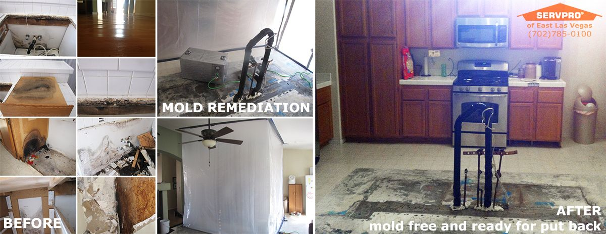 Water damage can cause mold growth in your home or