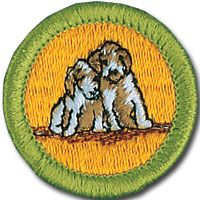 Dog care 2 4 thru 2 10 my daughter will be caring for the for Fishing merit badge