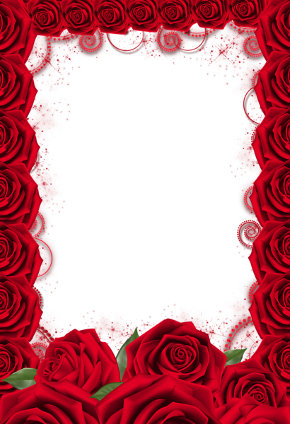 Red Rose Transparent Png Frame Red Roses Background Red Roses Wallpaper Rose Frame