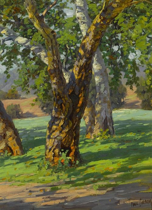 Trees And Shadow By Paul A Grimm Abstract Tree Painting Oil Painting Landscape Landscape Art