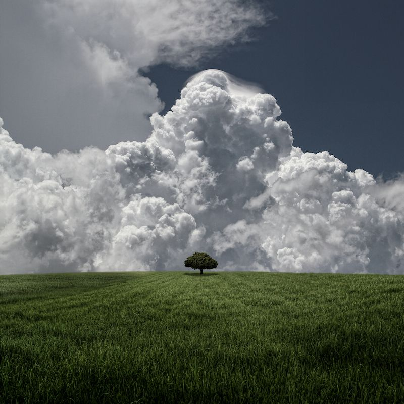 Huge Storm, Little Tree by Carlos Gotay, via 500px