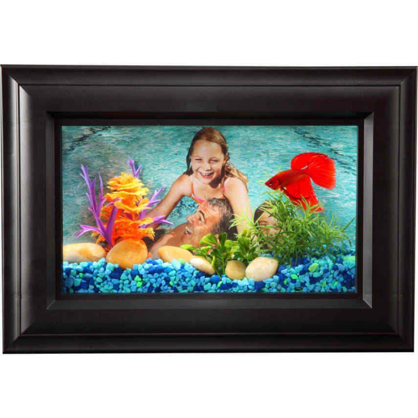 Hawkeye 0 75 Gallon Picture Frame Aquarium Led Lighting Room Decore Kids Gift Ebay Fish Tank Kids Aquarium Aquarium Fish Tank