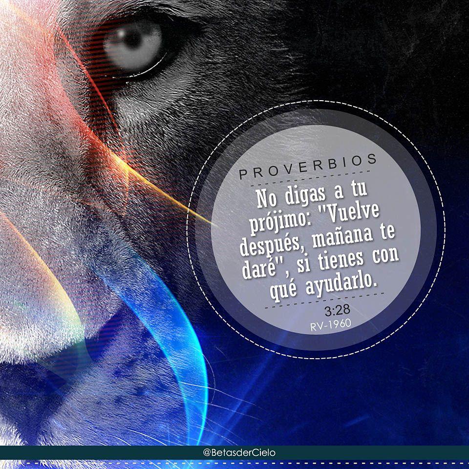 Dios Arte y Pasión - @BetasderCielo - León de la tribu de Judá.