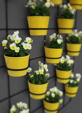 here is a wire and pots rendition   Vertical Garden Ideas     Yellow pots and flowers