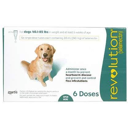 Revolution Fleas, Dogs, American dog