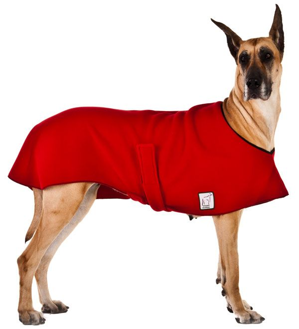 Great Dane Clothing And Accessories Great Dane Voyagers K9