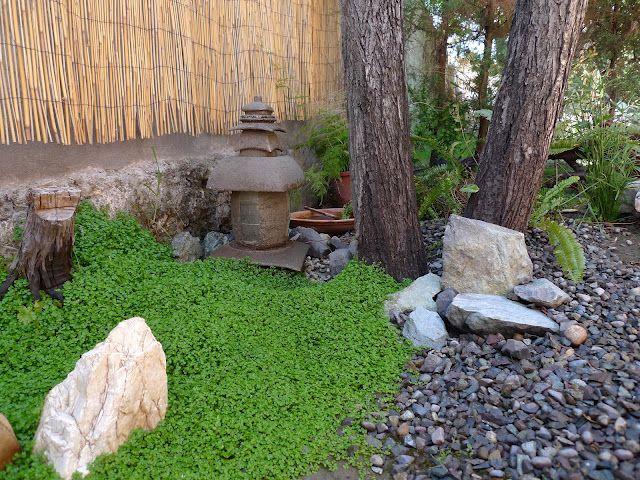 Mini japanese garden corner   gardening   Pinterest