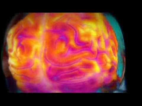 The Human Body - The Brain Power in Nascar | Brain power ...