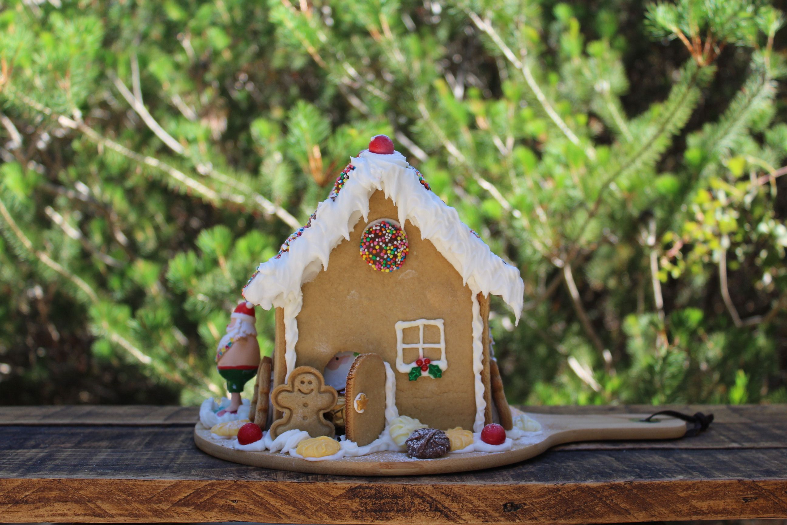 'Surfing Santa' Gingerbread House - Front.   Gingerbread ...