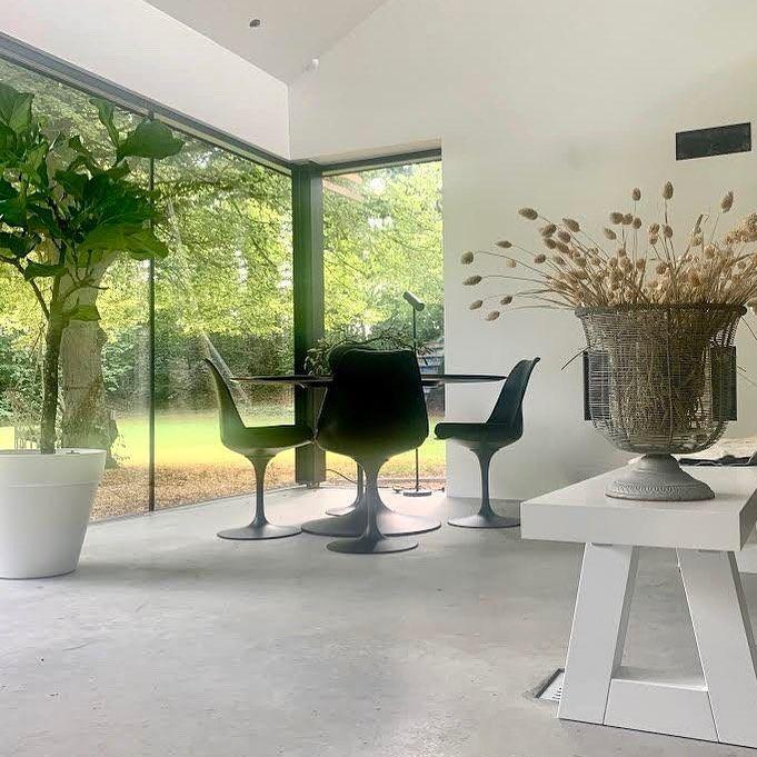"""MARGO VAN ERKELENS's Instagram photo: """"Nature 💚 . Studio shot . . #garden#studiolife#artist#art#kunst#gallery#nature#design#blackandwhite#expo#gallerylife…"""""""