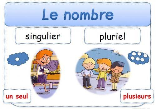 Le nombre (singulier-pluriel) | Affiches grammaire ...