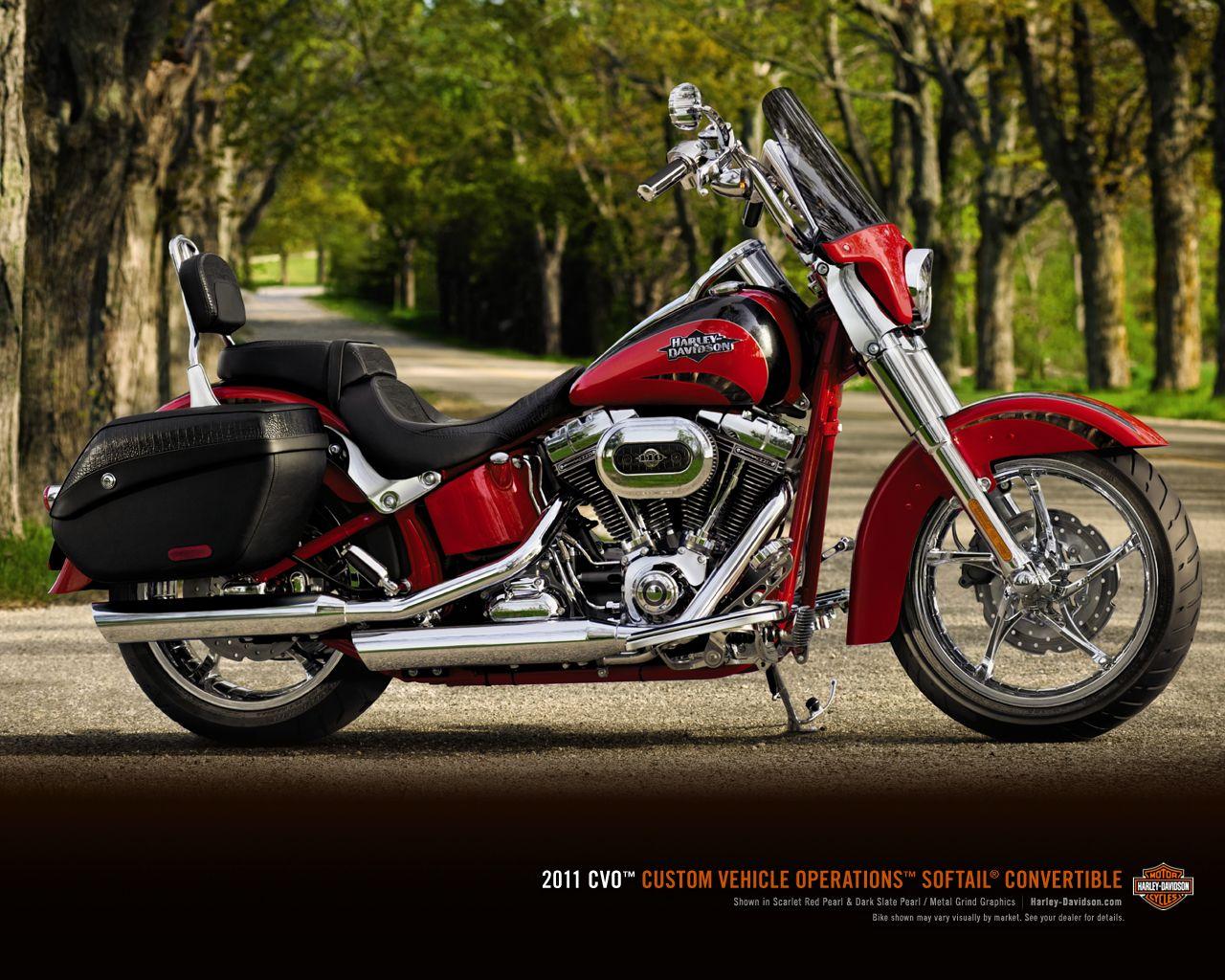 2011 CV0 Softail Convertible Softail, Harley davidson