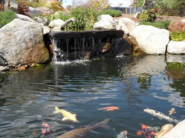 Koi pond waterfall water feature falling water design for Koi pool water gardens cleveleys