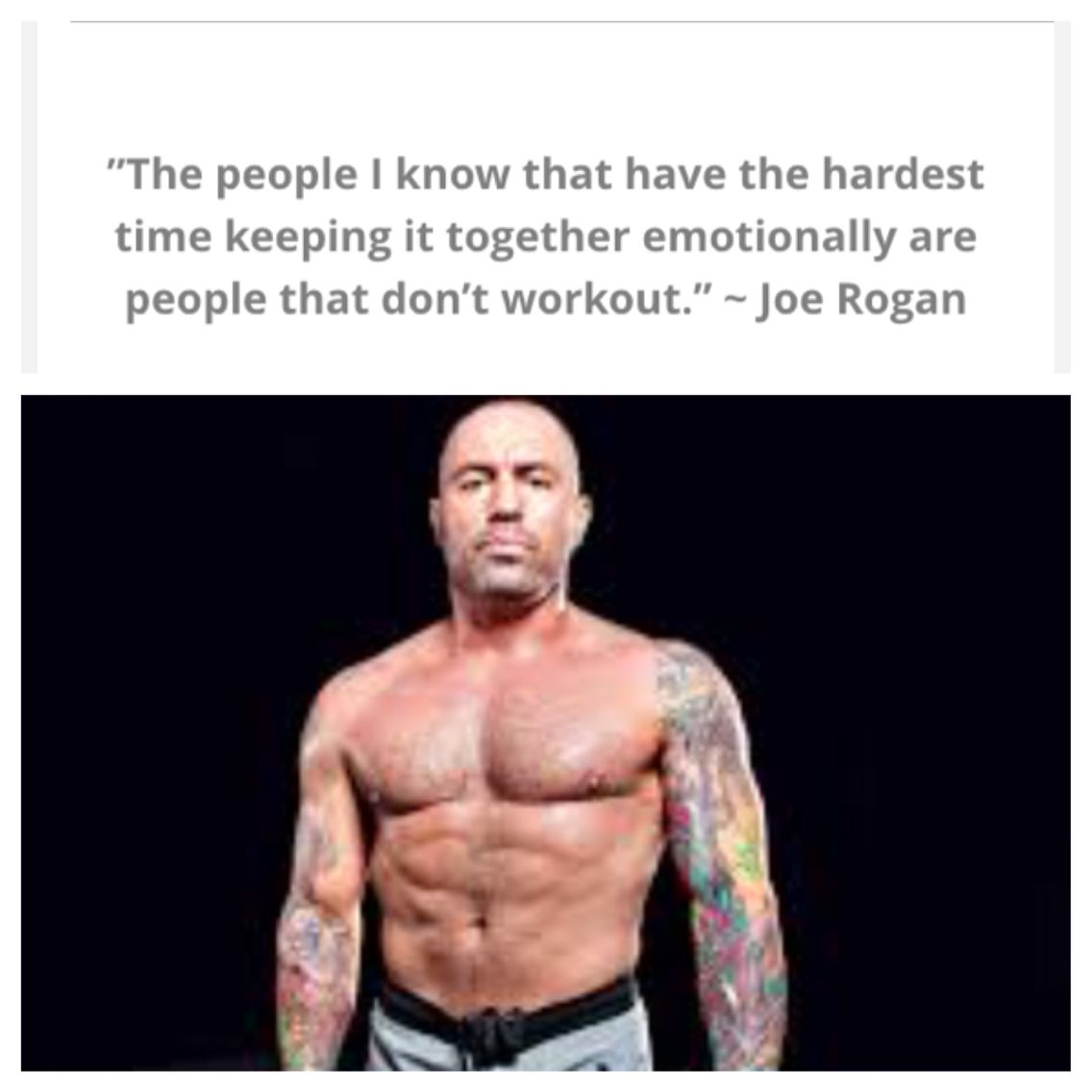 Joe Rogan Quote Joe Rogan Quotes Joe Rogan Mamba Mentality Quotes