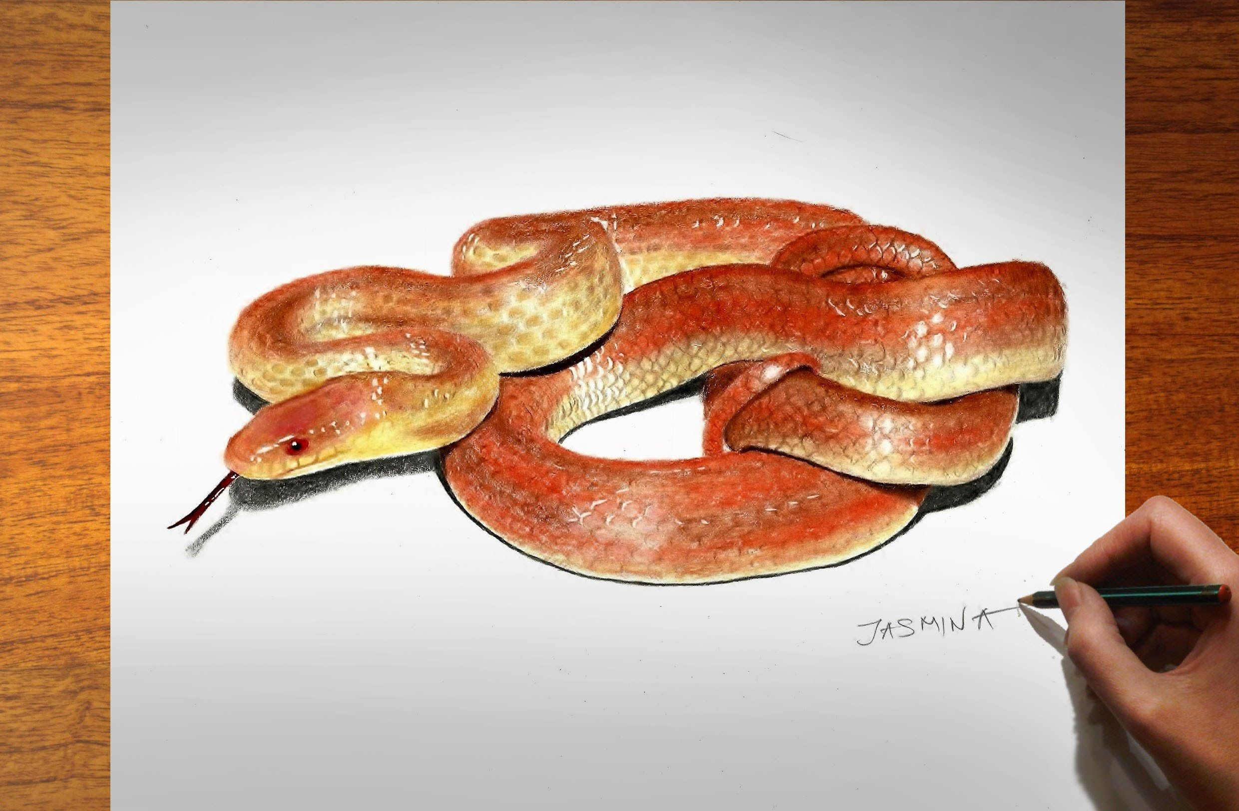 3d Colored Pencil Drawing Snake How To Draw Realistic Animals