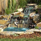How to build a backyard pond like this