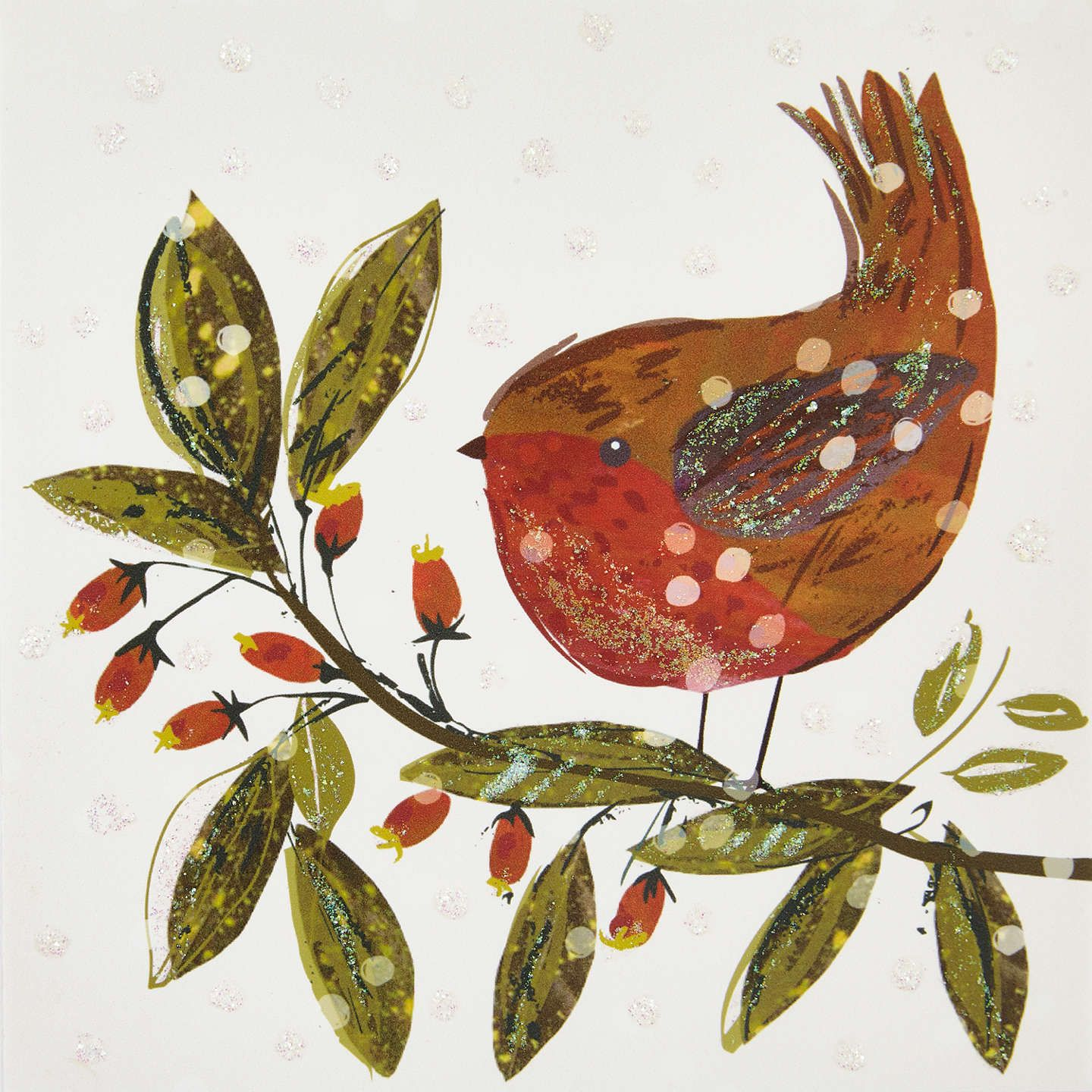 John Lewis Robin And Branch Charity Christmas Cards, Pack