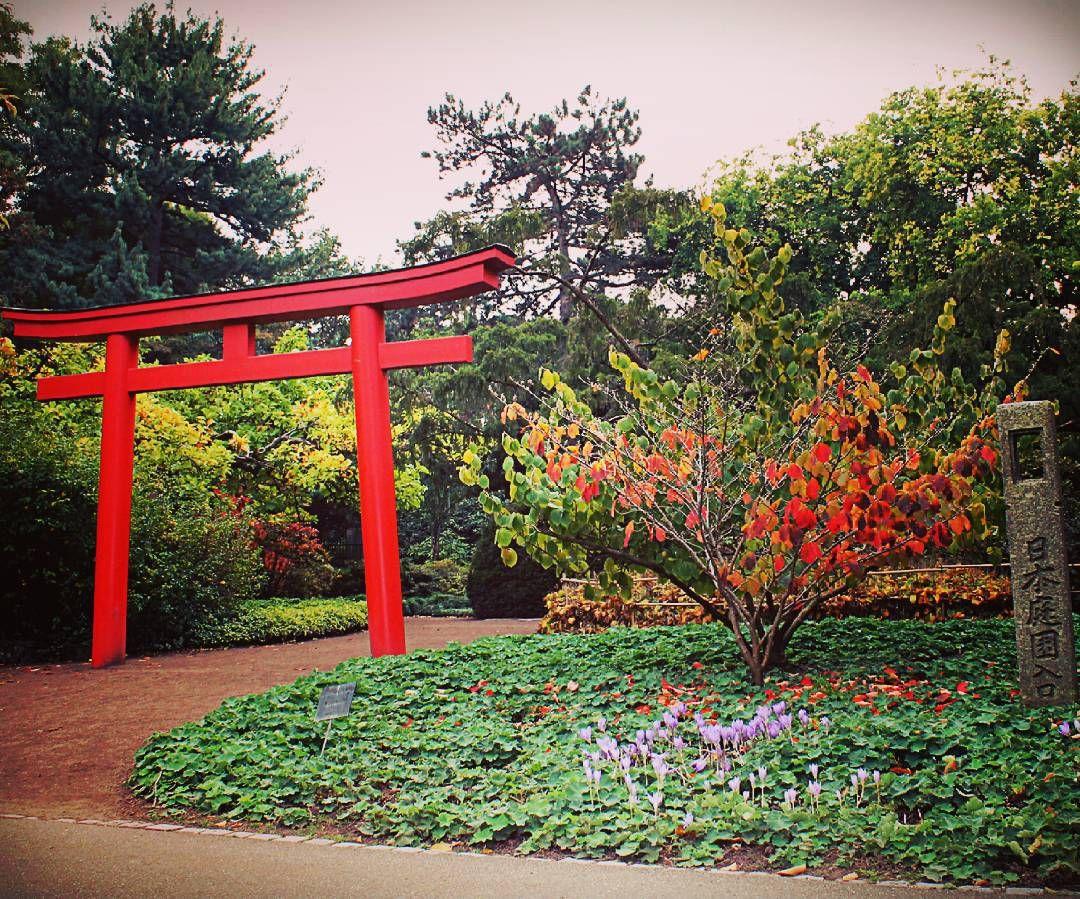 Ktg Karlsruhe Tourismus Gmbh On Instagram Herbst Im Japanischen Garten Mit Wunderschonen Farben Colourful A Karlsruhe Outdoor Structures Garden Arch