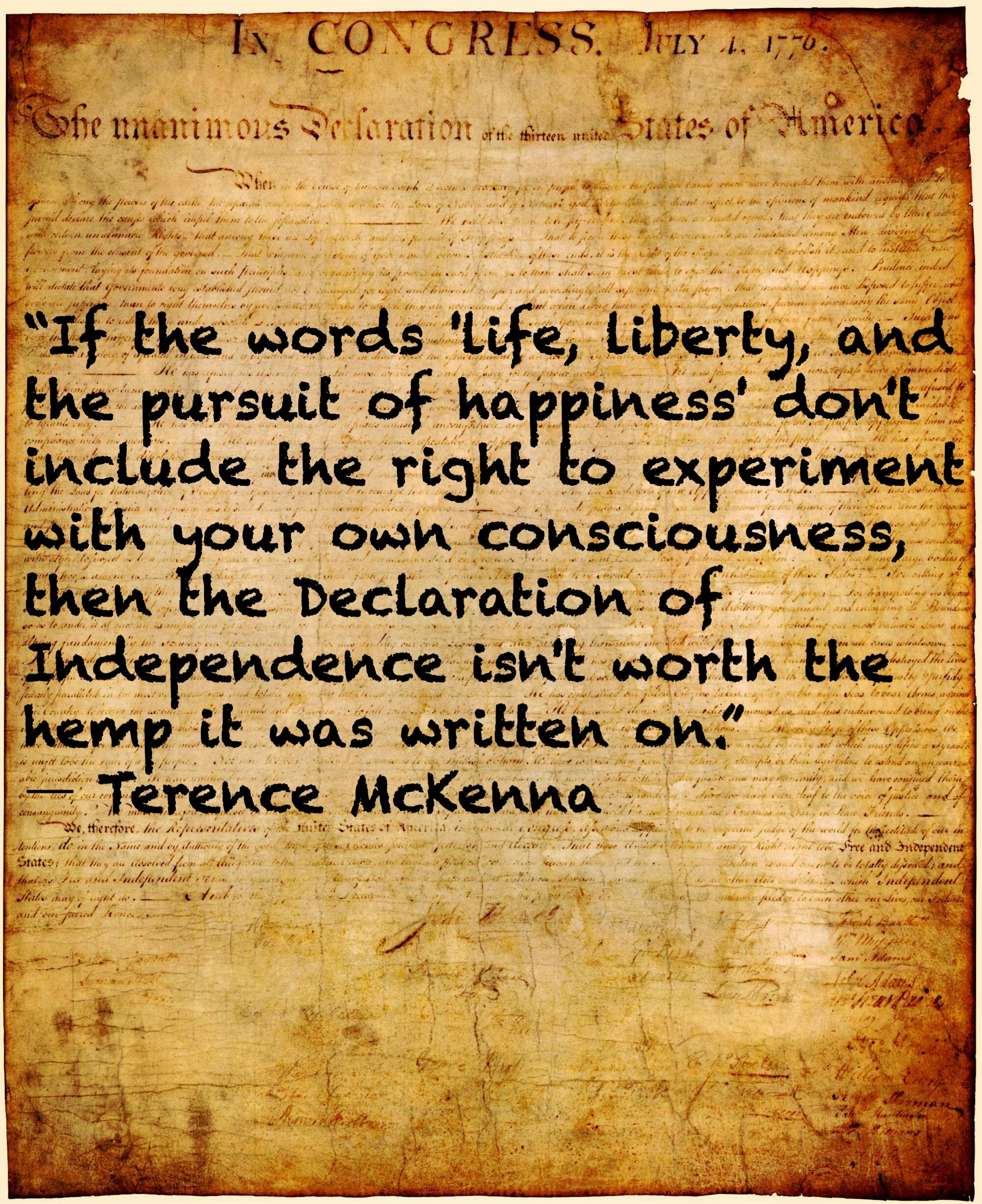 If The Words Life Liberty And The Pursuit Of Happiness Don T Include The Right To Experiment With Your O Words Terence Mckenna Declaration Of Independence