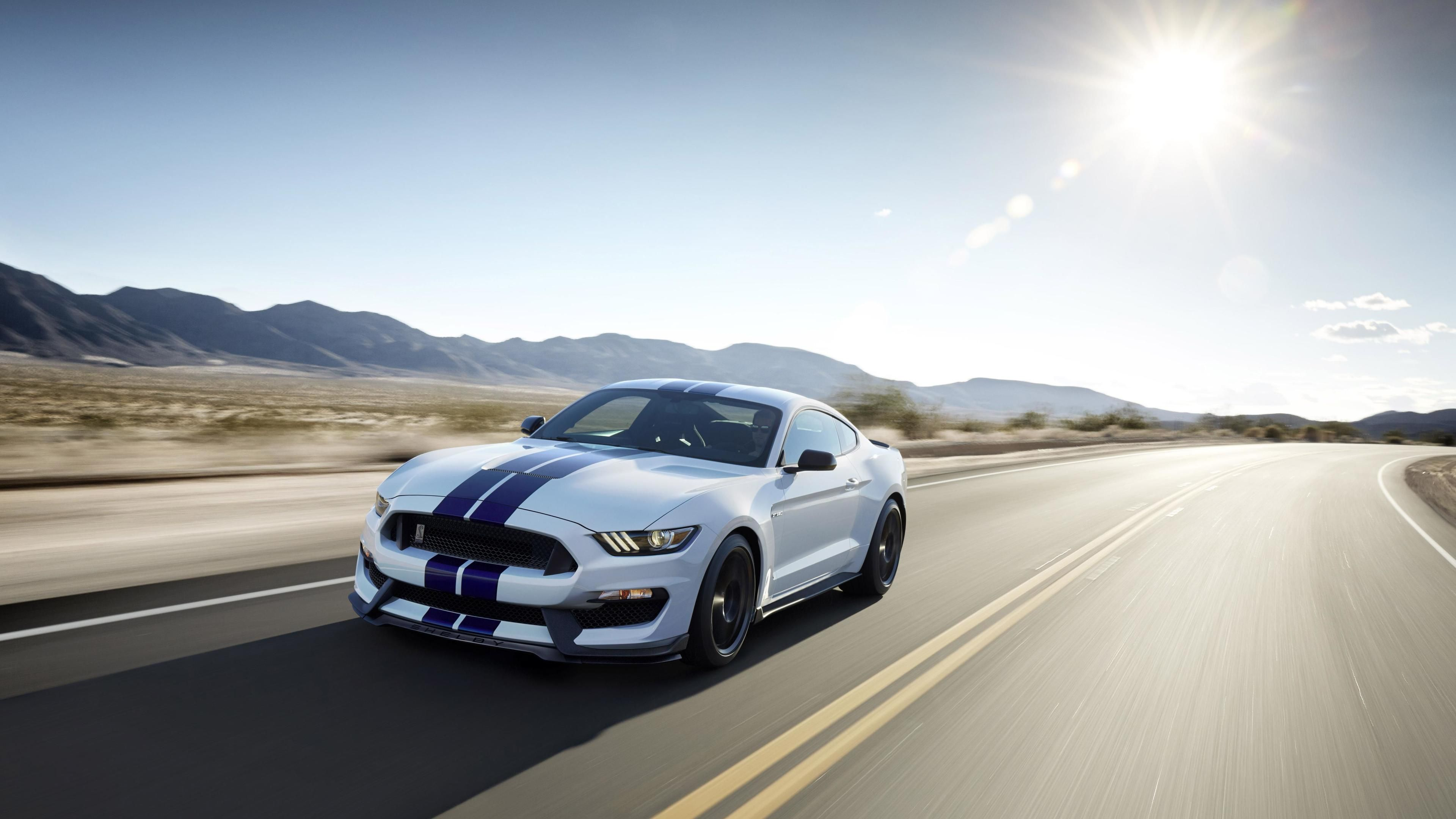 2019 Ford Mustang Shelby Gt350 4k Shelby Wallpapers Hd Wallpapers Ford Wallpapers Ford Mustang Wallp Mustang Wallpaper Ford Mustang Wallpaper Mustang Shelby
