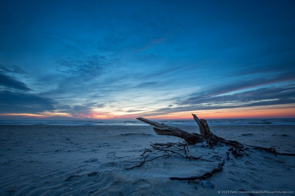 Sunrise at Assateague NS © 2015 Patty Hankins