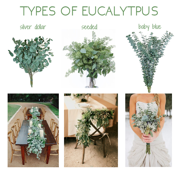 Check out these ideas to include eucalyptus in your for Different types of wedding decorations