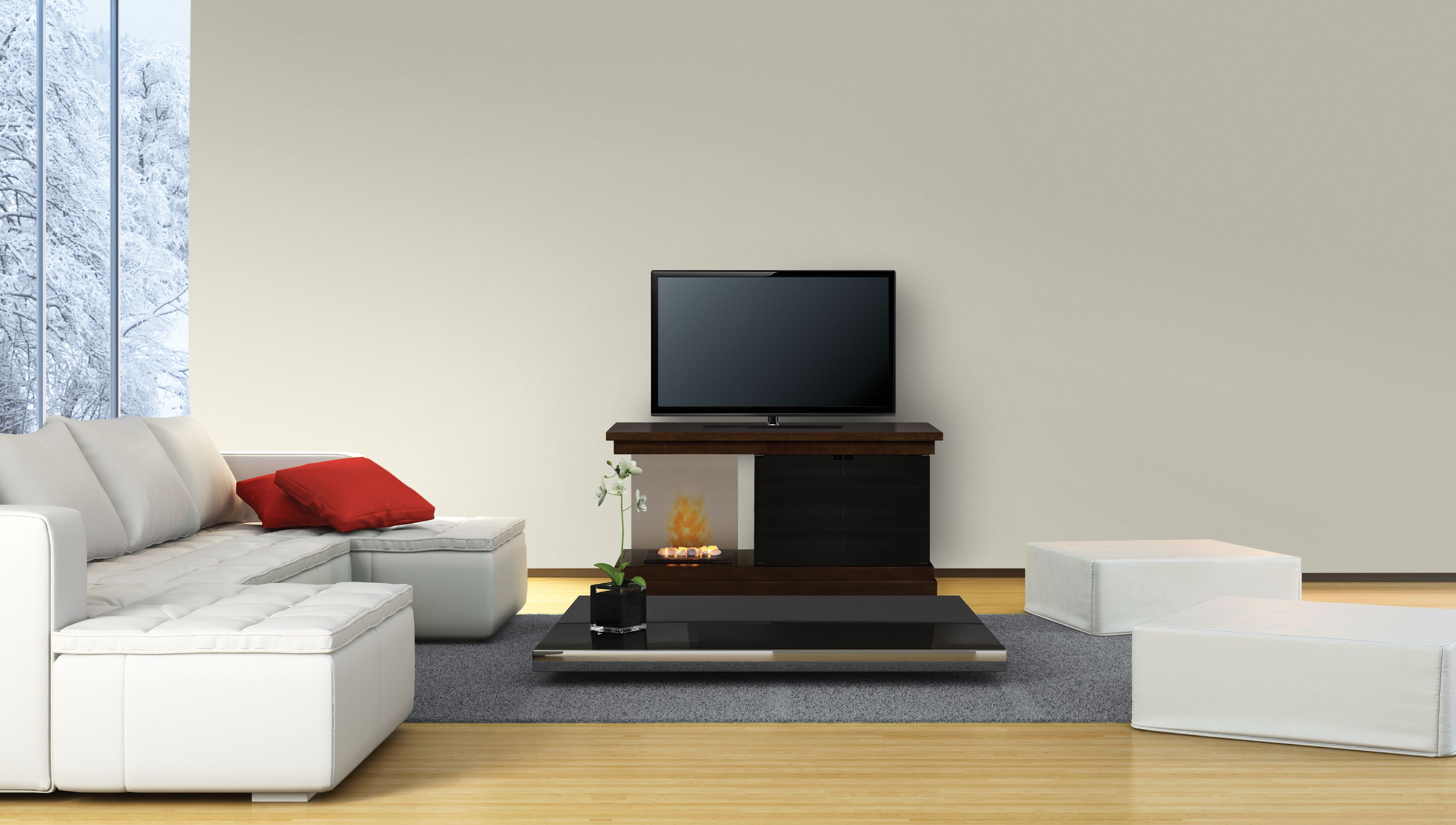 no one does electric fireplaces by dimplex realism with loads of