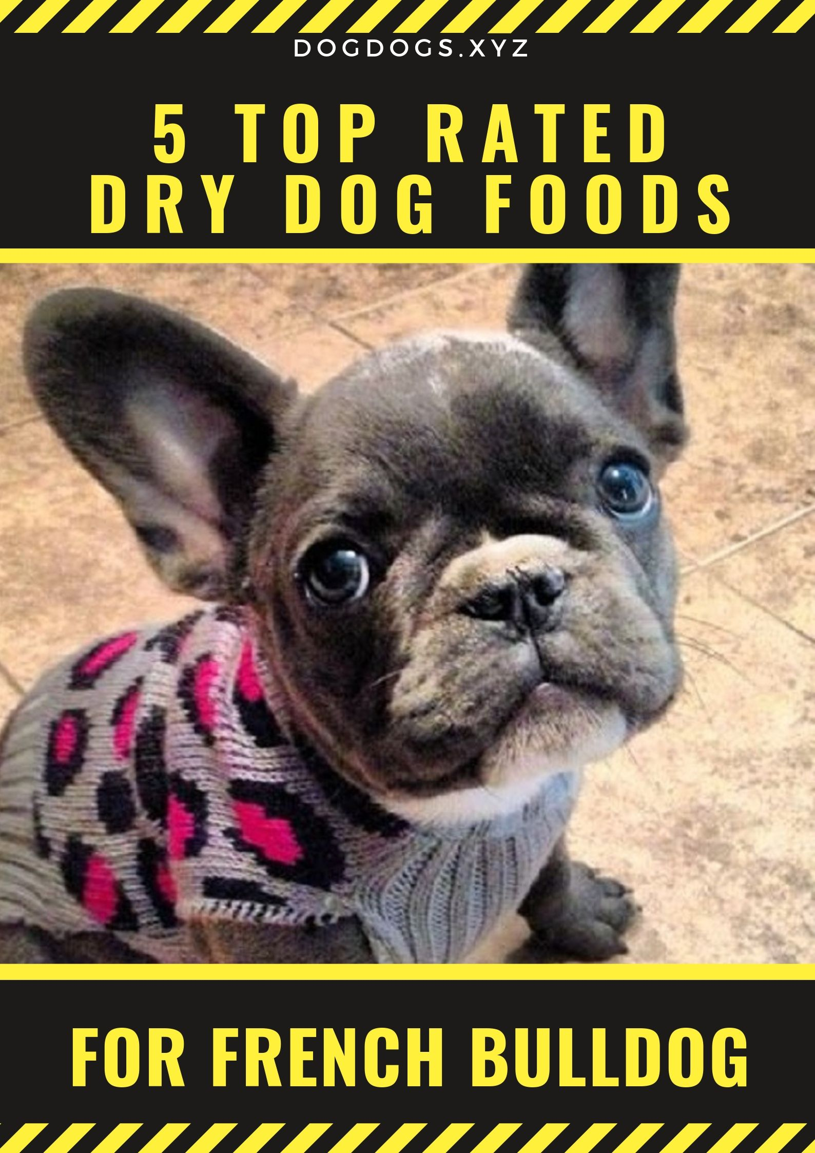5 Top Rated Dry Dog Foods Dry Dog Food Best Dog Food Brands