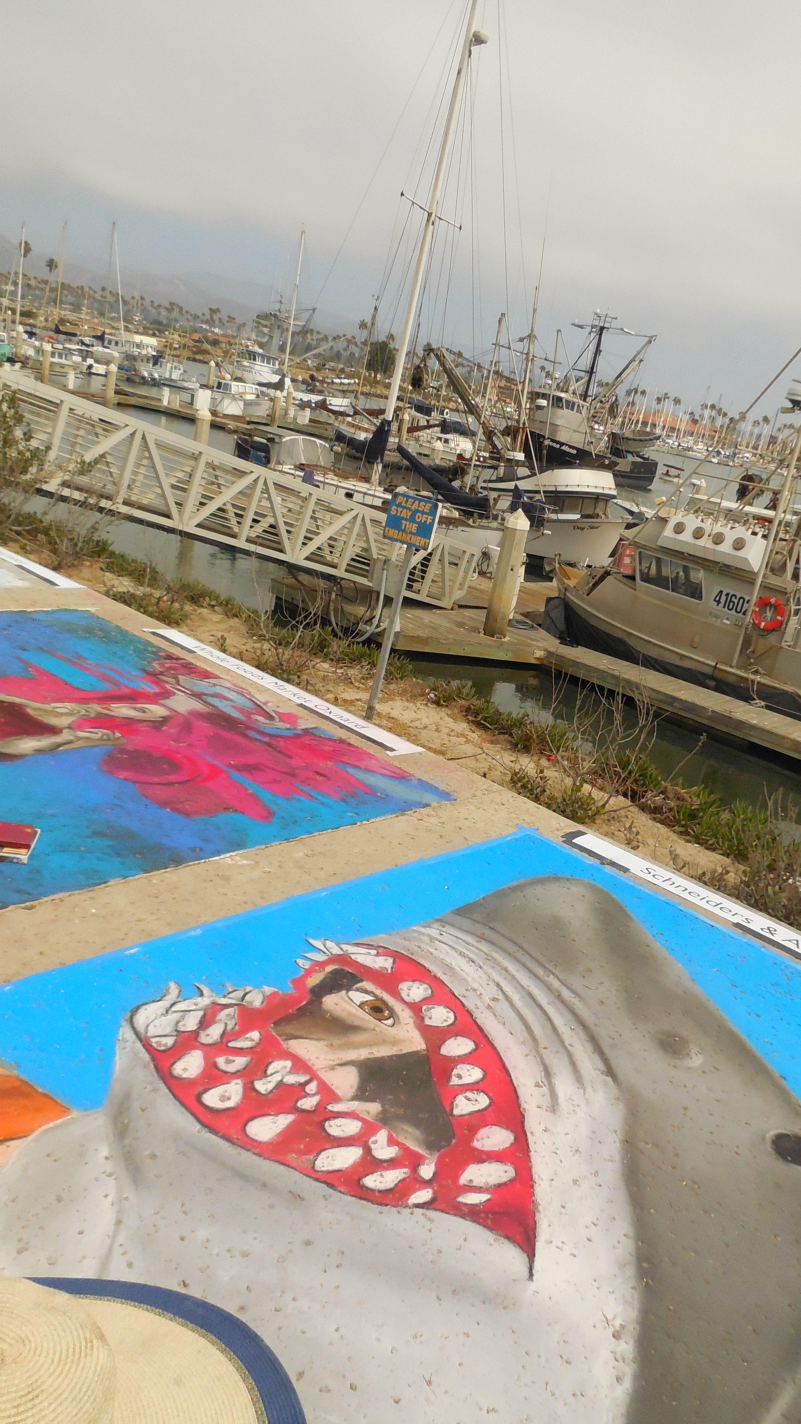 Art Festival Shark Sea Life Chalk At The Ventura Harbor Village