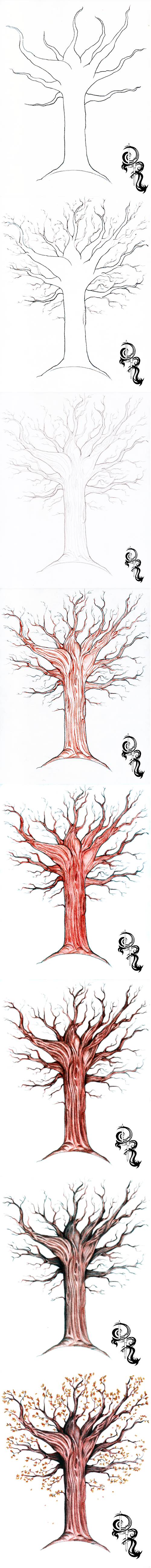 How To Draw An Autumn Tree With Colored Pencils