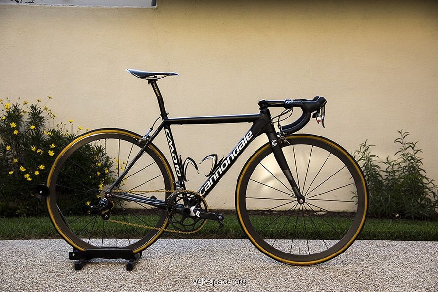d7b69906529 gold chain, gum sidewalls Cycling Equipment, Cycling Gear, Road Cycling,  Scott Bikes