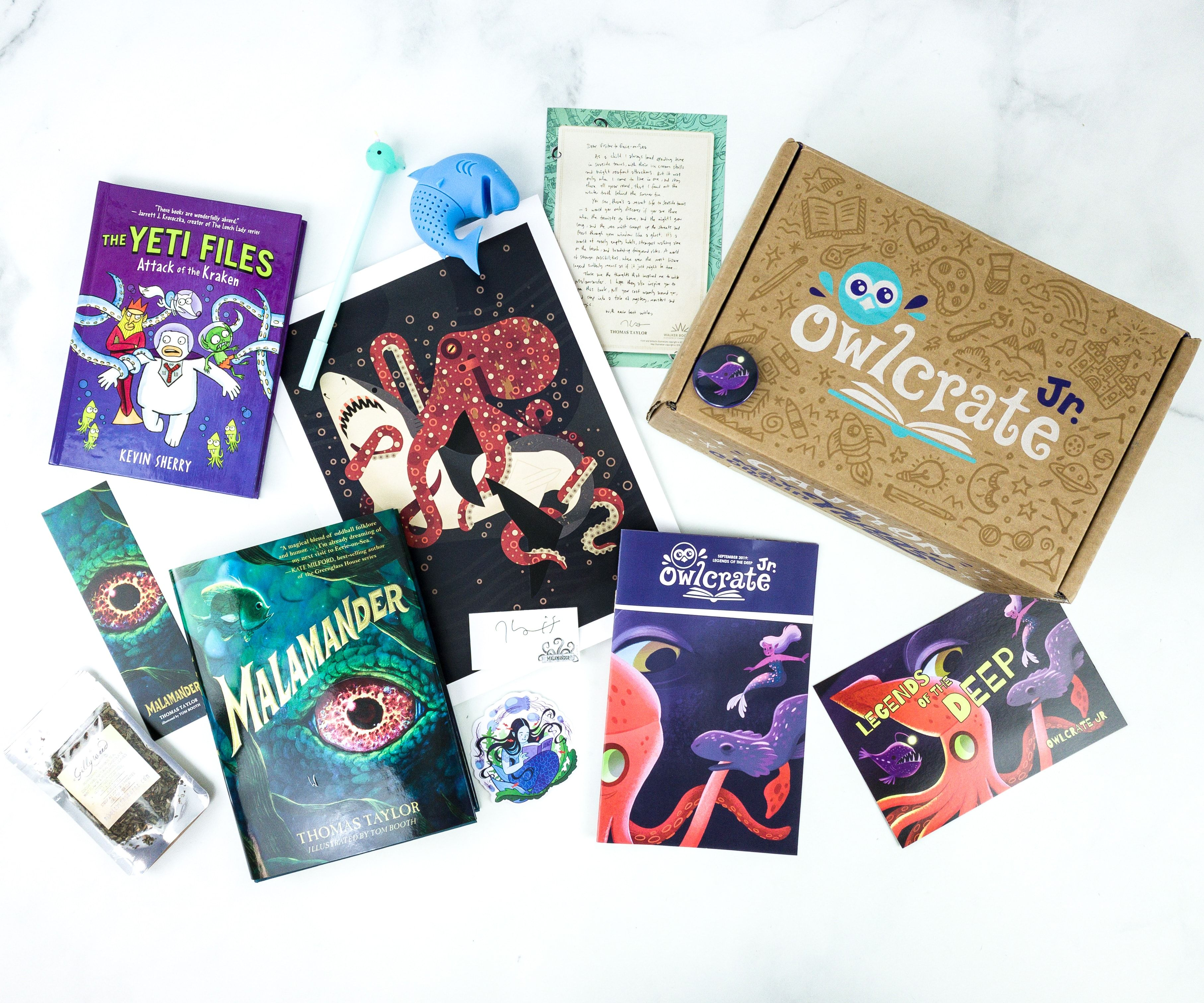 Owlcrate Jr September 2019 Box Review Coupon Hello Subscription Owlcrate Magical Book Subscriptions For Kids