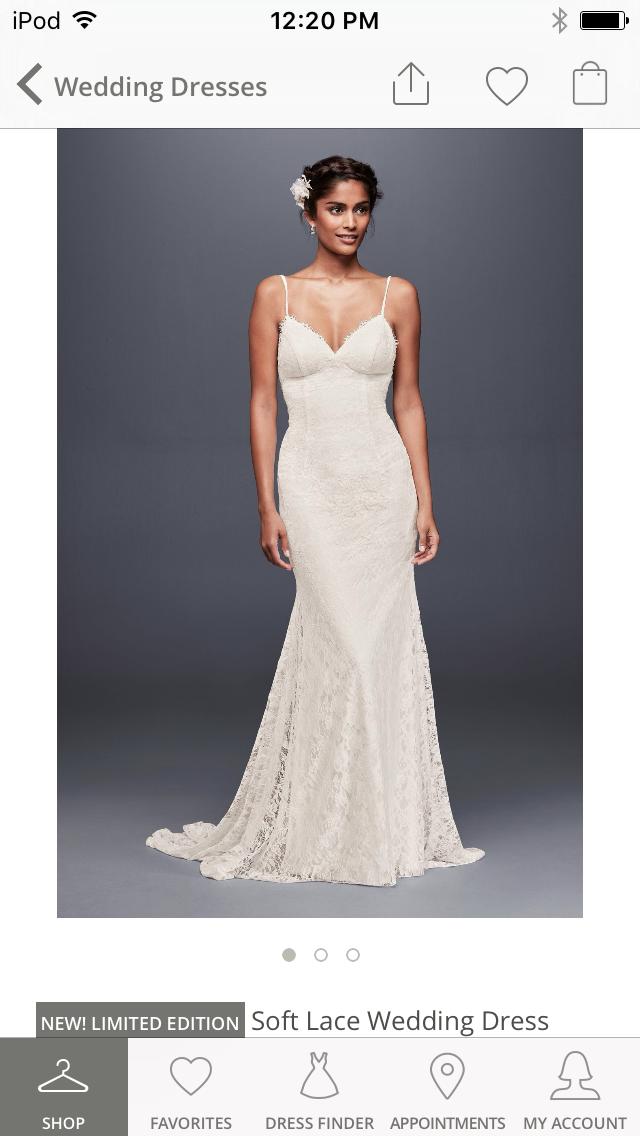 David S Bridal Spaghetti Strap Form Ing Lace Silhouette Weddingdress