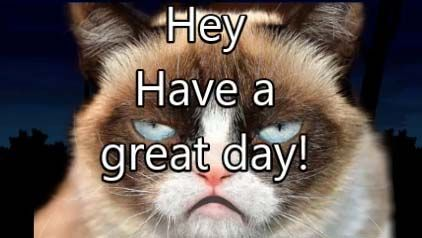 Thank you, Eddy. I love you too ) Grumpy cat, Have a