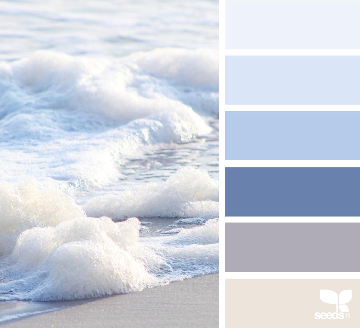 Photo of Color Shore