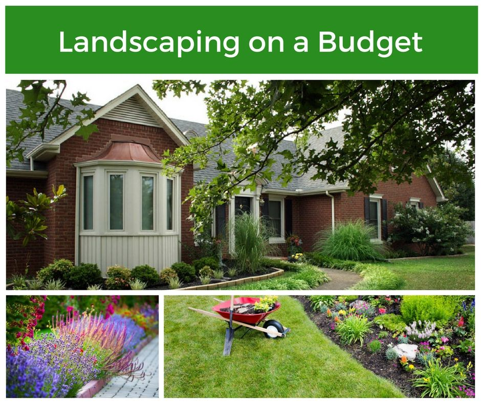 Landscaping Your Home on a Budget in 2020   Landscape ...