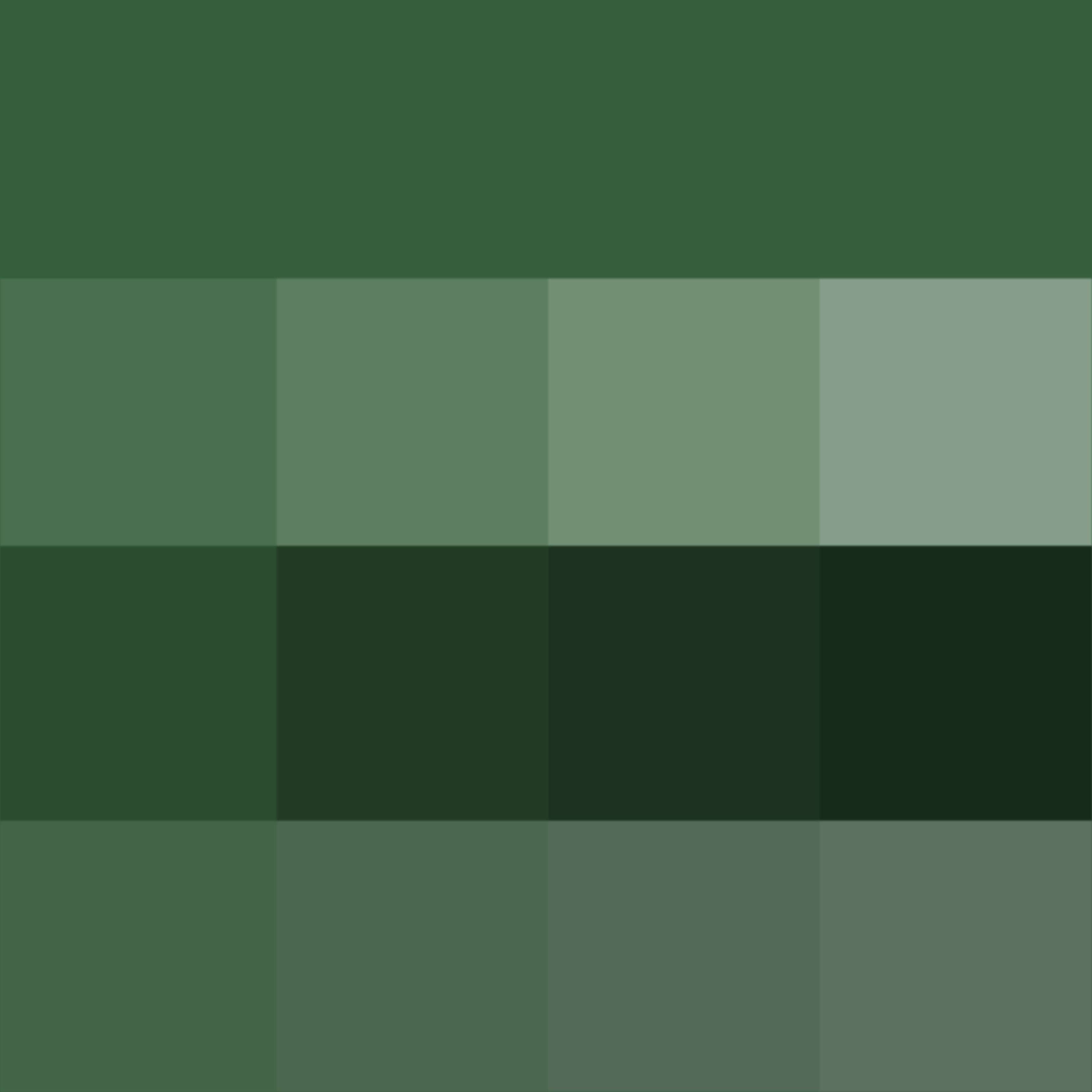 hunter green hue pure color with tints hue