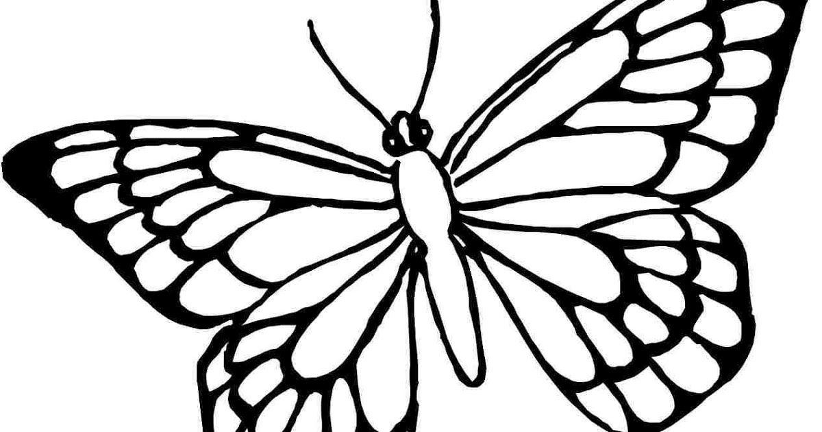 Gambar Mewarnai Kupu Kupu Bunga