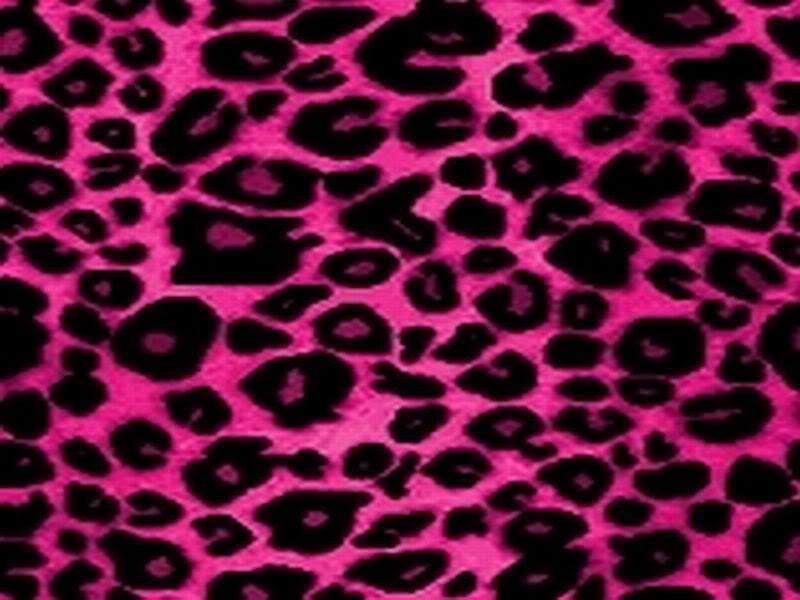 Best Of Maculato Sfondo Leopardato Rosa On Sfondo