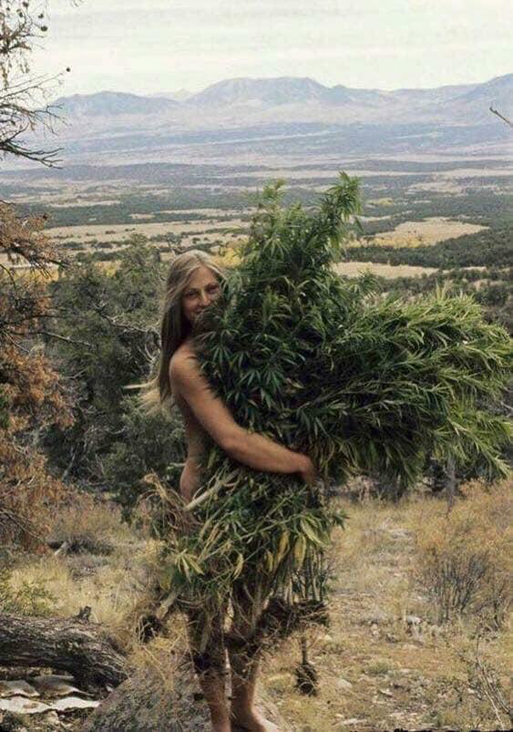 A Girl With A Massive Bush Relaxing Oils Mother Nature Natural Health Remedies
