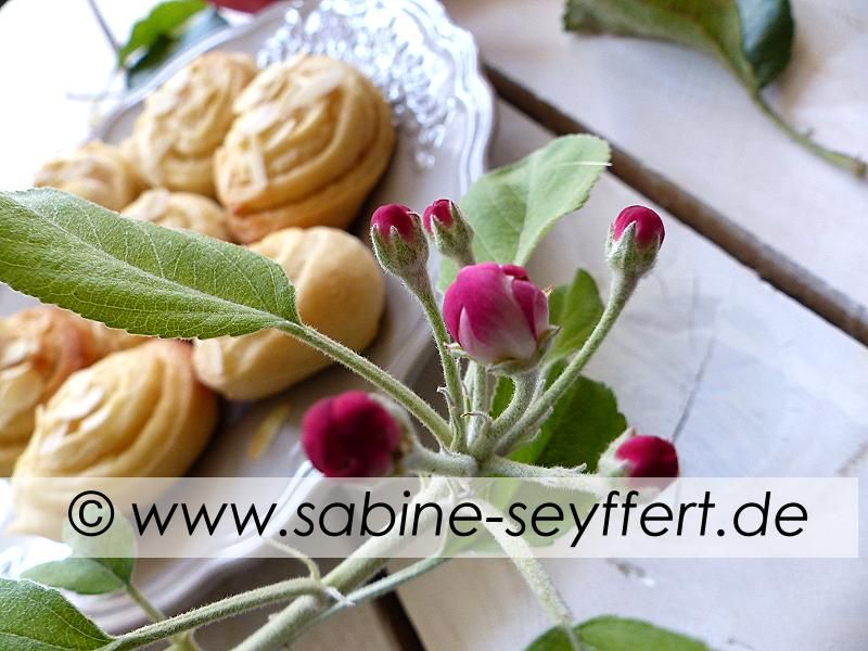 Back Idee: Selbst gebackene Teigschnecken mit Äpfeln und Marzipan - lecker