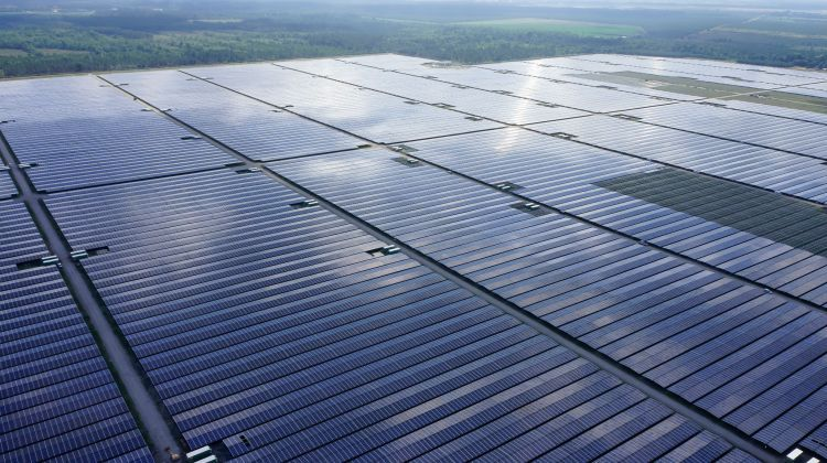 Neoen Files Ipo Prospectus With French Regulators Solar Solar Farm Solar Power Plant
