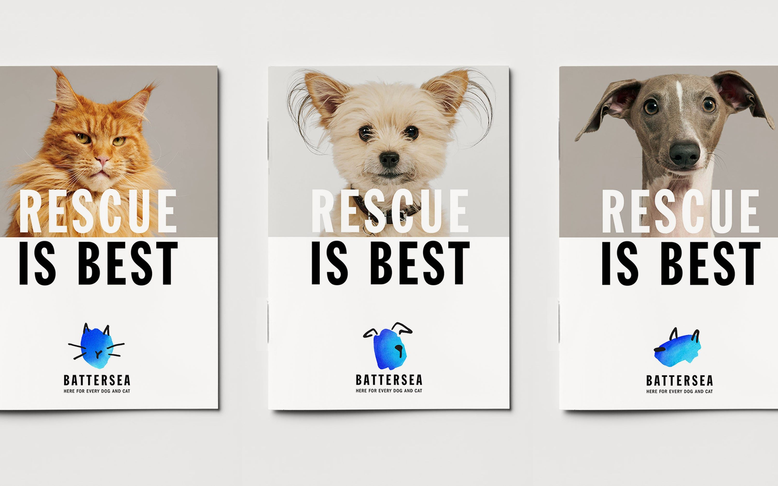 Battersea Brand Strategy Tone Of Voice And Visual Identity For One Of Britain S Oldest And Most Famous A In 2020 Pentagram Design Animal Rescue Logo Battersea Dogs