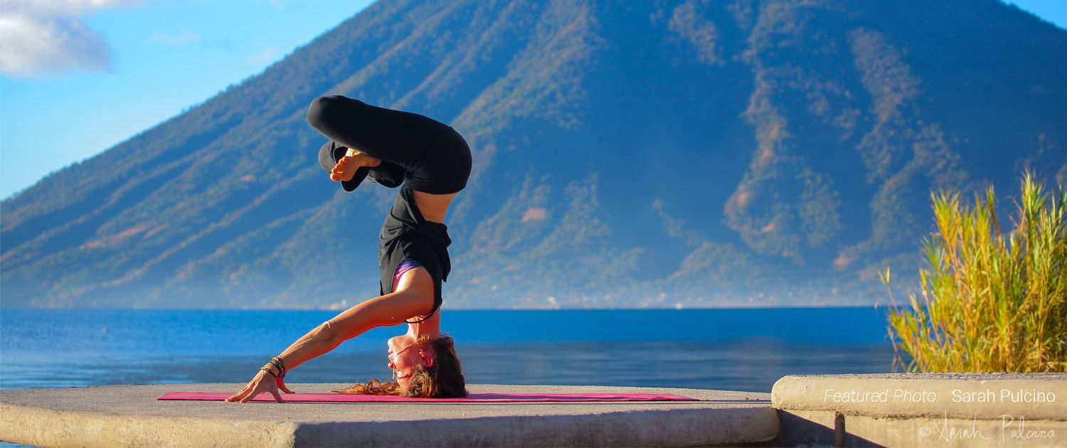 Yoga Trade links instructors, students, and wellness