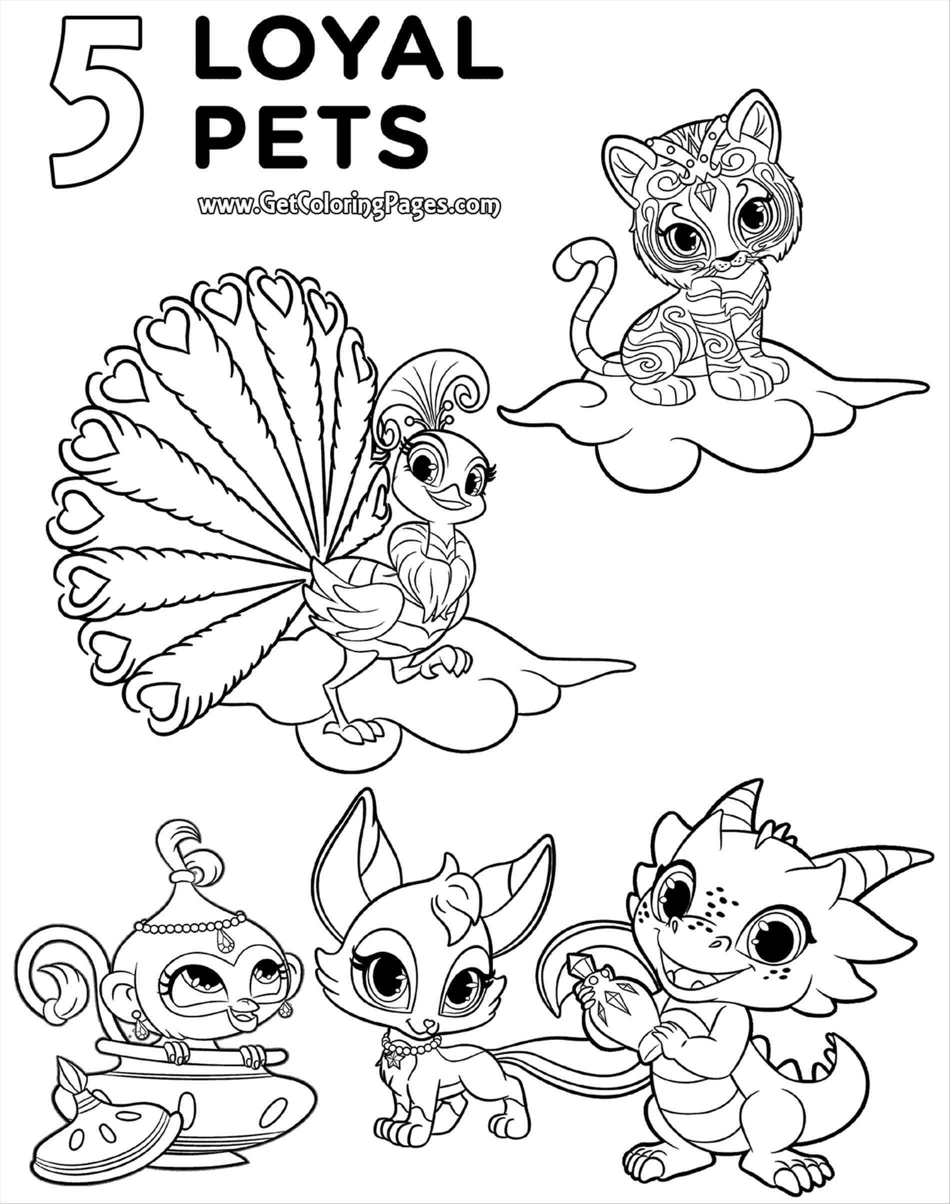 Shimmer And Shine Printables Coloring Pages