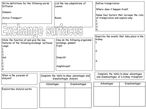 Old spec aqa b3 revision sheets science pinterest aqa and old spec aqa b3 revision sheets urtaz Images