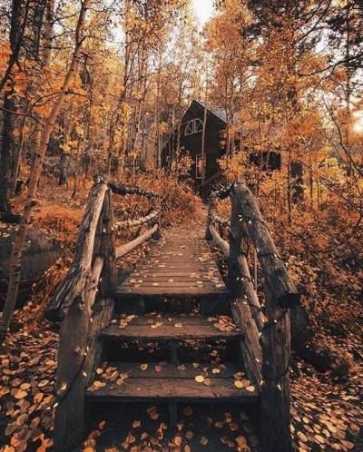 Photo of #autumn #aesthetic #autumnaesthetic #vibes #autumnvibes