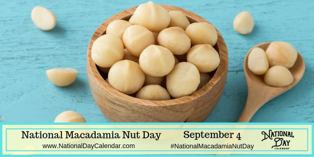 National Macadamia Nut Day September 4 National Day Calendar Macadamia Nuts Chocolate Macadamia Nuts Macadamia